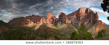 Breathtaking view of Zion National Park. Stock photo © jaymudaliar