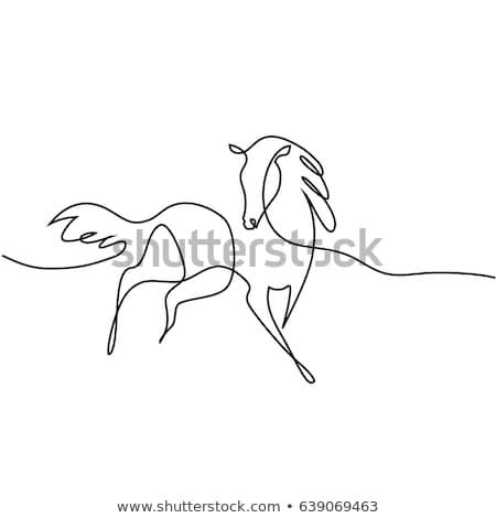 drawing of a horse Stock photo © SKVORTSOVA