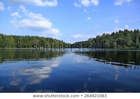 Tree Line River Reflection Stock photo © ca2hill