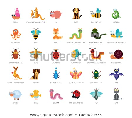 Funny insect set Stock photo © Genestro