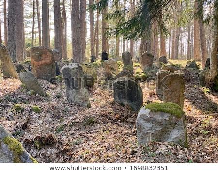 Stockfoto: Oude · begraafplaats · wolken · gras · groene · Blauw