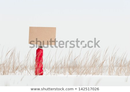 El tahta kış alan kol Stok fotoğraf © kyolshin