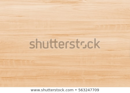 Textura de madera detallado textura naturales madera pared Foto stock © stevanovicigor
