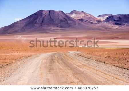 Twisting desert road Stock photo © emattil