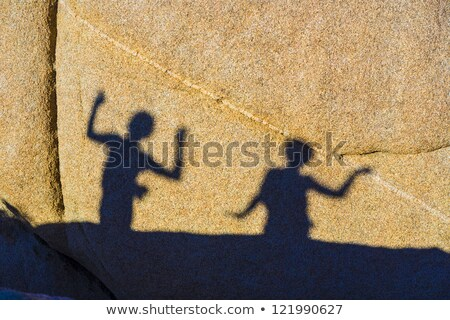 children playing with shadows on a rock in jushua tree national stock photo © meinzahn