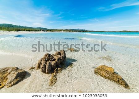 Costa Smeralda, Sardinia Stock photo © Catuncia