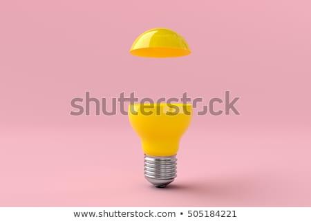 Tudás erő klasszikus terv lila keret Stock fotó © tashatuvango