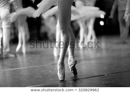 Ballerina legs on tiptoe Stock photo © d13
