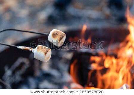 hoguera · fuego · madera · noche · llama - foto stock © dashapetrenko
