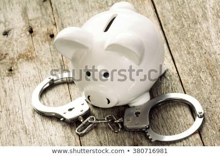 the criminal piggy bank Stock photo © flipfine