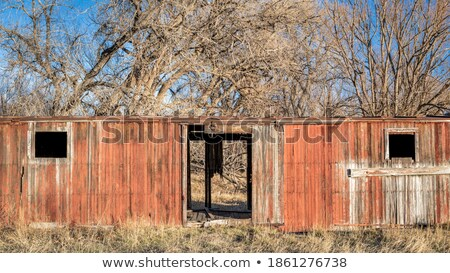 abandoned farm buildings in northern colorado stock photo © pixelsaway