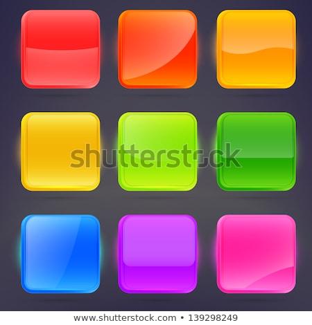 Ingesteld glanzend iconen web 20 vector Stockfoto © Mr_Vector