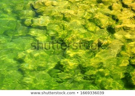 mooie · jonge · vrouw · Rood · bikini · water · permanente - stockfoto © pressmaster