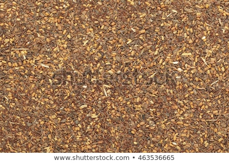 rojo · caoba · semillas · colección · secar · hierbas - foto stock © ziprashantzi