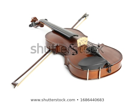 vintage violin Stock photo © caimacanul