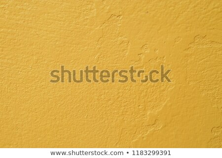 mustard background Stock photo © ozaiachin
