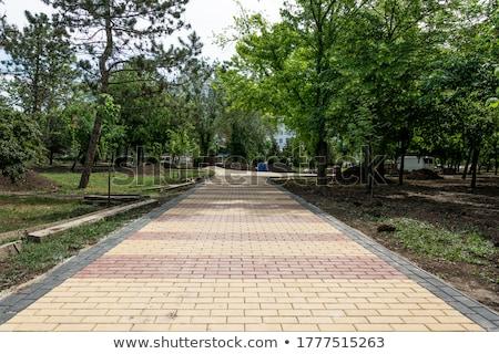 Cuadrados pavimento arena color sin costura textura Foto stock © tashatuvango