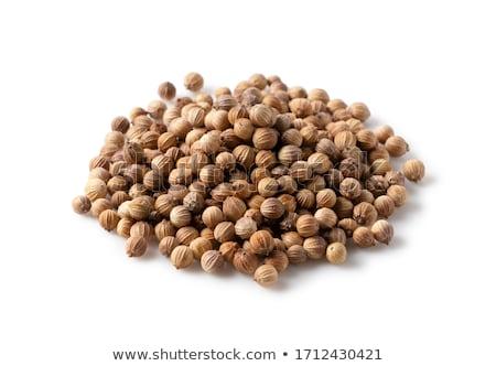 kişniş · tohumları · gıda · bitki · ot · yalıtılmış - stok fotoğraf © ziprashantzi
