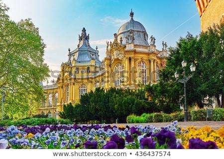 Castelo Budapeste Hungria hoje casas agrícola Foto stock © Zhukow