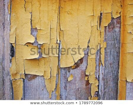 öreg barna citromsárga rongyos fából készült ajtó Stock fotó © vlaru