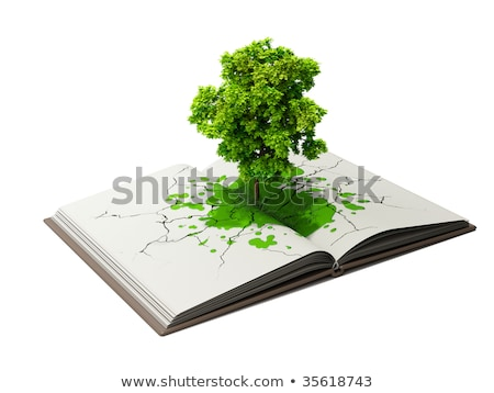 Albero crescita libro aperto istruzione immaginazione creatività Foto d'archivio © photocreo