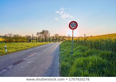 Vidéki út citromsárga nemi erőszak mező tájkép Stock fotó © manfredxy