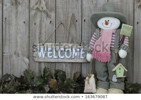Christmas garland borders wood panel background Stock photo © ozgur
