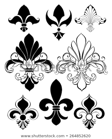 набор окрашенный черно белые эскиз стиль рисунок Сток-фото © blackmoon979