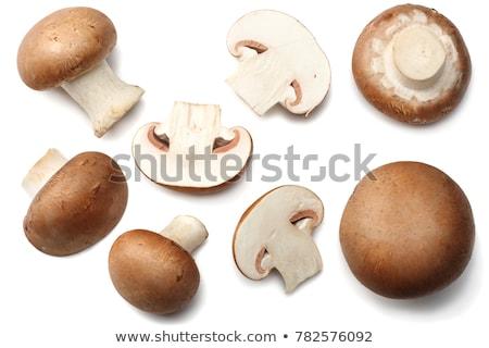 ehető · gomba · megművelt · fajok · ital · mezőgazdaság - stock fotó © digifoodstock