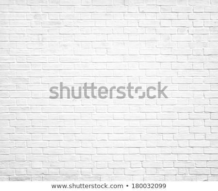 Old weathered white brick wall texture Stock photo © stevanovicigor