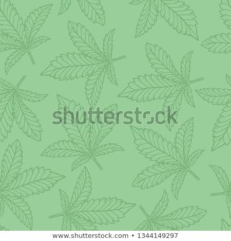 Foto stock: Sem · costura · canabis · padrão · folhas · médico · maconha