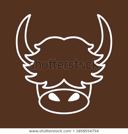 Marrón cara feliz ilustración arte tropicales blanco Foto stock © bluering