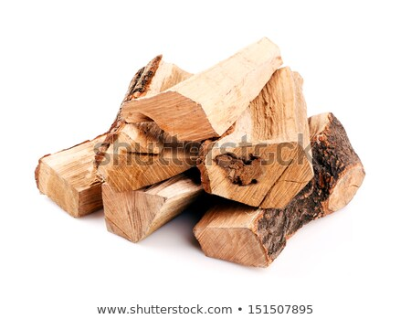 log isolated. Wooden billet on white background Stock photo © popaukropa