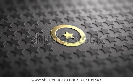 excelência · bússola · agulha · indicação · palavra · imagem - foto stock © lightsource