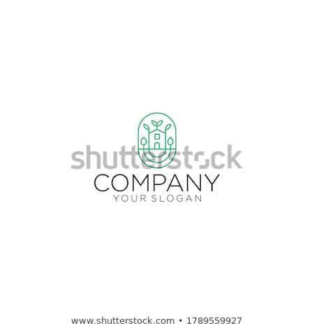 eco · casa · modelo · templates · conjunto · ecologia - foto stock © barsrsind
