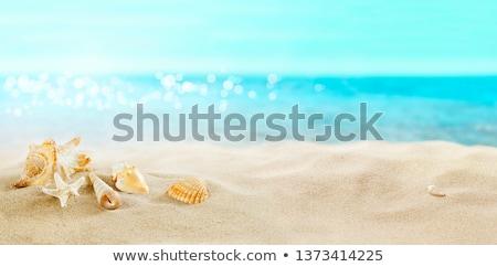 Foto stock: Concha · praia · nuvens · verão · areia · nascer · do · sol