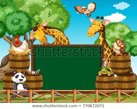 bordo · plantilla · cute · monos · ilustración · paisaje - foto stock © bluering