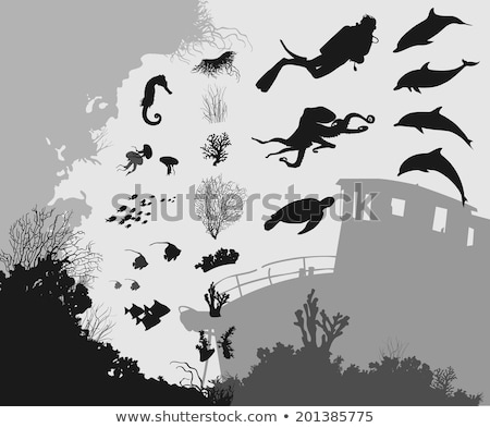 Stock photo: Divers at coral reef with sea turtle and different fishes