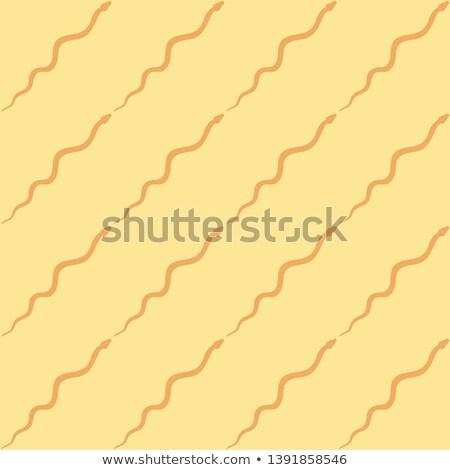 змей вектора пустыне черно белые Сток-фото © popaukropa