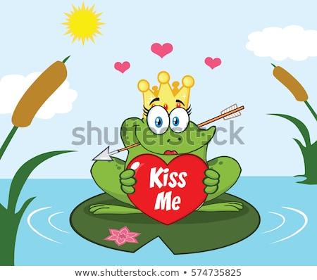лягушка Принцесса мультфильм талисман характер корона стрелка Сток-фото © hittoon