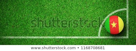 Football in cameroon colours against green background Stock photo © wavebreak_media