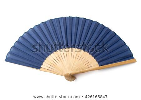стороны бумаги вентилятор вектора набор моде Сток-фото © Macartur888