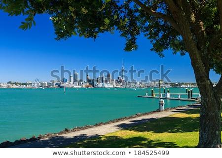 Nova Zelândia dramático céu esportes mar Foto stock © daboost