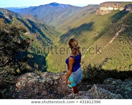 Blue Mountains Vista Stock photo © lovleah