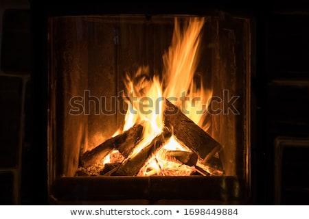lángok · kandalló · intenzív · égő · fák · fa - stock fotó © wdnetstudio