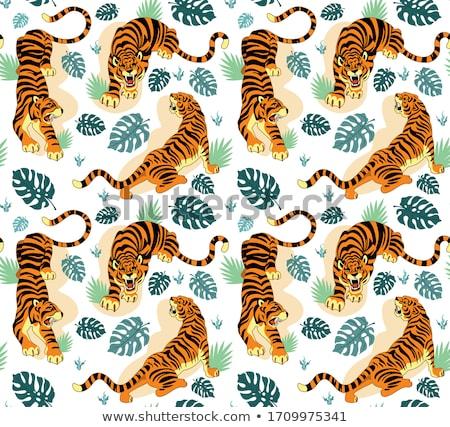 Cartoon тигр цветы иллюстрация кошки оранжевый Сток-фото © cthoman