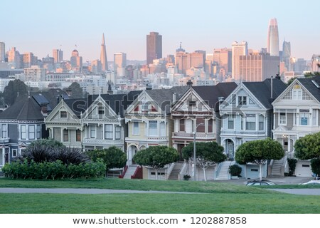 закат окрашенный дамы Сан-Франциско iconic домах Сток-фото © yhelfman