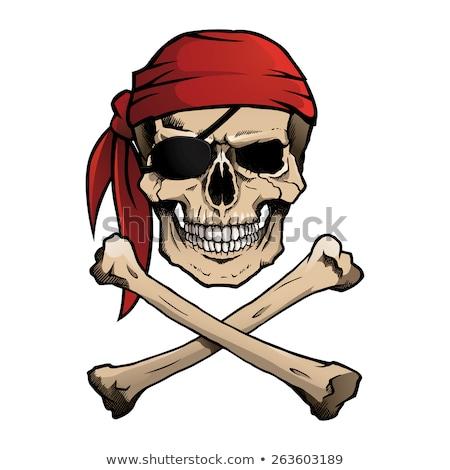 vrolijk · piraten · vlag · piraat · zwarte · menselijke - stockfoto © abdulsatarid