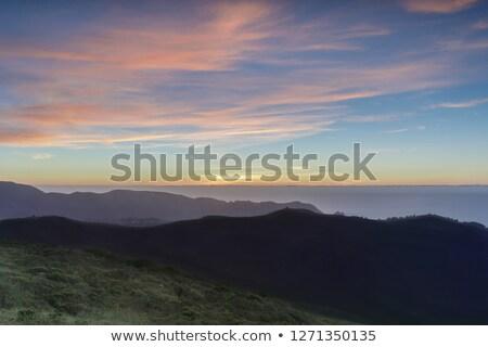 Sunset views of Sweeney Ridge top and the Pacific Ocean Stock photo © yhelfman