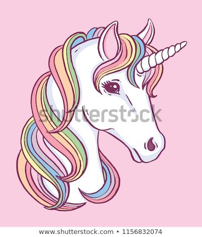 Happy White Unicorns Rainbow Color Mane and Horn Stock photo © robuart